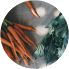 Organic carrots and cabbage